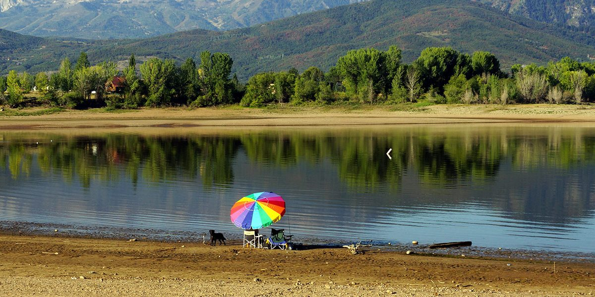 pineview umbrella